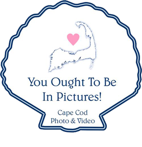 You Ought to be in Pictures! Cape Cod Photography and Videography